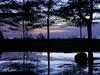 Similajau National Park After Sunset