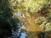 Sims Creek