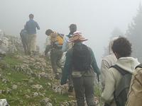 Singalila Parque Nacional Trekking