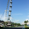 Singapore Flyer And Racetrack