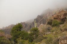 Siphon Draw Trail 53 - Tonto National Forest - Arizona - USA