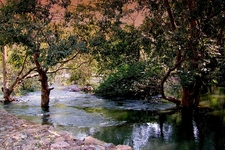 Sita Mata Wildlife Sanctuary