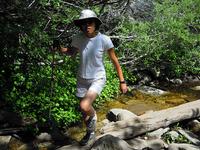 Six Foot Track to Te Panaa Hut