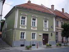 Slovenj Gradec Hugo Wolf Birthosue