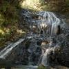 Small Waterfall @ Piha Near Auckland NZ
