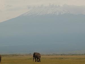 Amboseli National Park 3 Days Pacakge Fotos