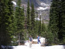 Snyder Lake Trail At Glacier - Montana - USA