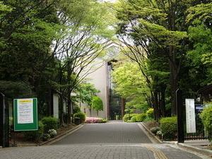 Soai University