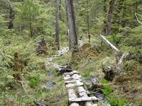 Soda Lake Trail