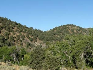 Soldier Canyon Trail