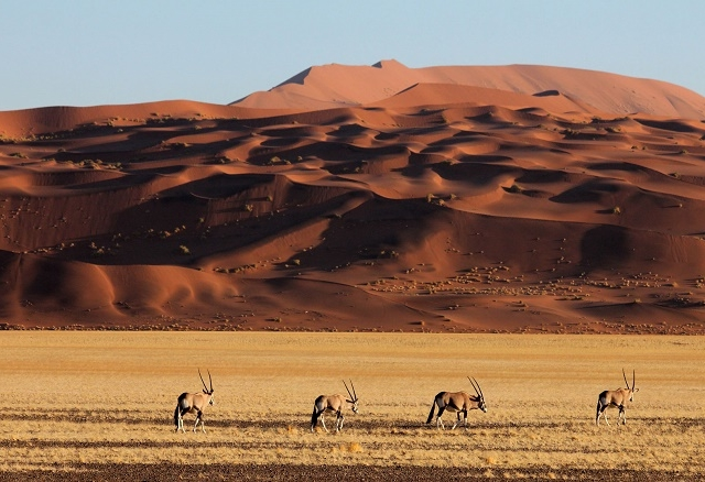 8 Day Sossusvlei, Swakop And Etosha Self- Drive ( Lodging) Photos