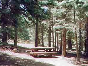 Sopa Springs Campground