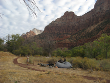 South Campground Amphitheater - Zion - Utah - USA