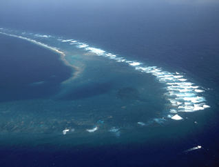 Southeast Part Of Kingman Reef Looking North