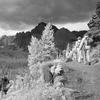 South Shore Trail - Glacier - Montana - USA