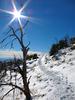 Springs Trail