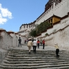 Stairway To Potala Palace