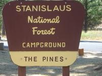 Stanislaus Pines Campground