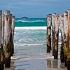 @ St. Clair Beach - Dunedin - Otago NZ
