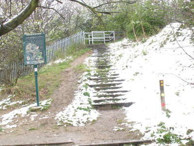 Steps To Gilbert's Pit