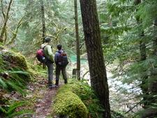 Stetattle Creek Trail