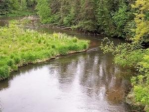 Río Directo