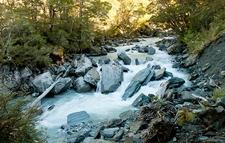 Stream Inside Mount Aspiring National Park - South Island NZ