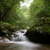 Stream Valley - Benxi Liaoning