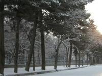 Shar-e-Naw Parque