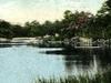 Stricklands Pond Cos Cob C T 1 9 1 0
