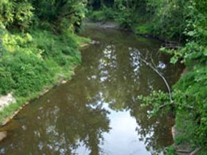 Río Fuerte