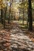 Sugar Creek Hiking Trail