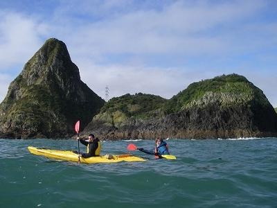 @ Sugar Loaf Marine Reserve - Taranaki NZ