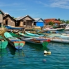 Sulawesi Fishing Boats