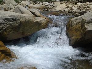 Hiking To Shivapuri Hill