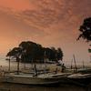 Sunrise At Taprobane