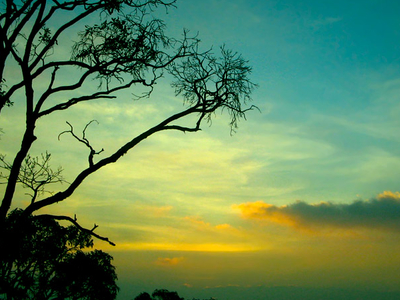 Sunset In Yercaud