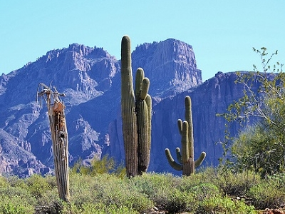 Superstition Mountains Landscape AZ