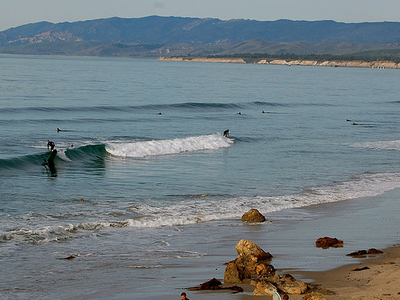 Surfers In Santa Barbara