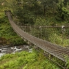 Suspension Bridge Near Gupteshwar Cave - Shivalaya Pokhara