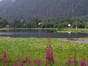 Lago de los Cisnes