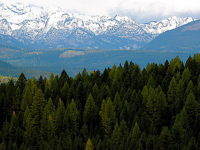 Swan Valley - Mission Mountains Montana