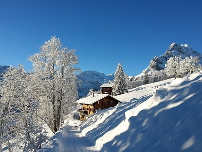 Swiss Cottage In Alps