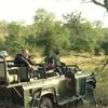 Sabi Sand Game Reserve Privado