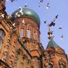 Saint Sophia Cathedral In Harbin