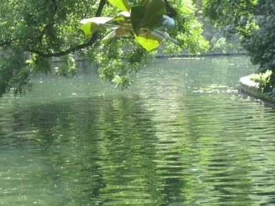 San Antonio River At Witte Museum
