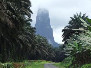 Obo Parque Nacional