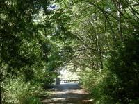 Schmitz Park