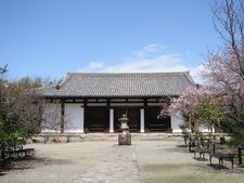 Shin Yakushi Ji