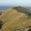 Signall Hill